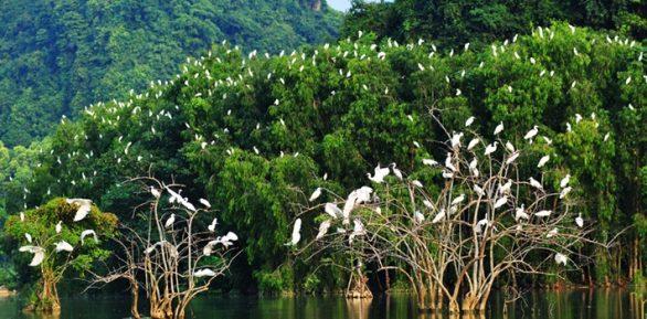 Parc Thung Nham Ninh Binh
