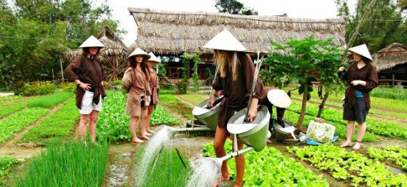 Village Tra Que Hoi An