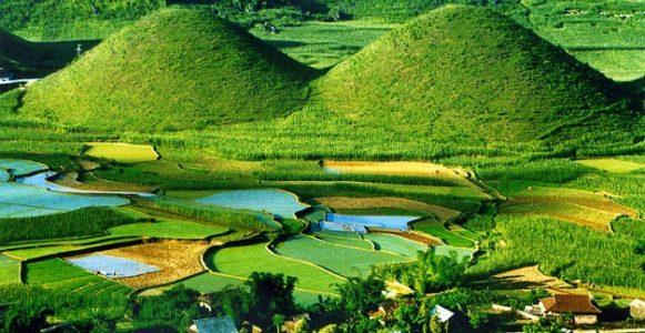 Ha Giang - Circuit saisonier par agence de voyage locale au Vietnam