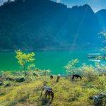 Parcs Nationaux au Vietnam