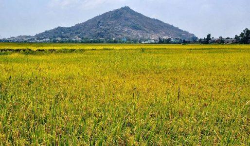 Mont Sam à Chau Doc