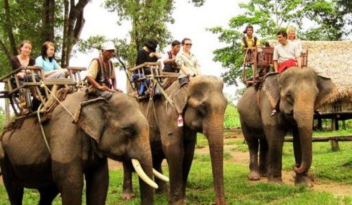 Promenade à dos d'éléphant au village Buon Don