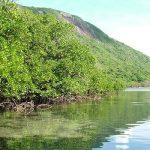 Visite parc national de Con Dao