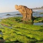 meilleures plages du Sud du Vietnam